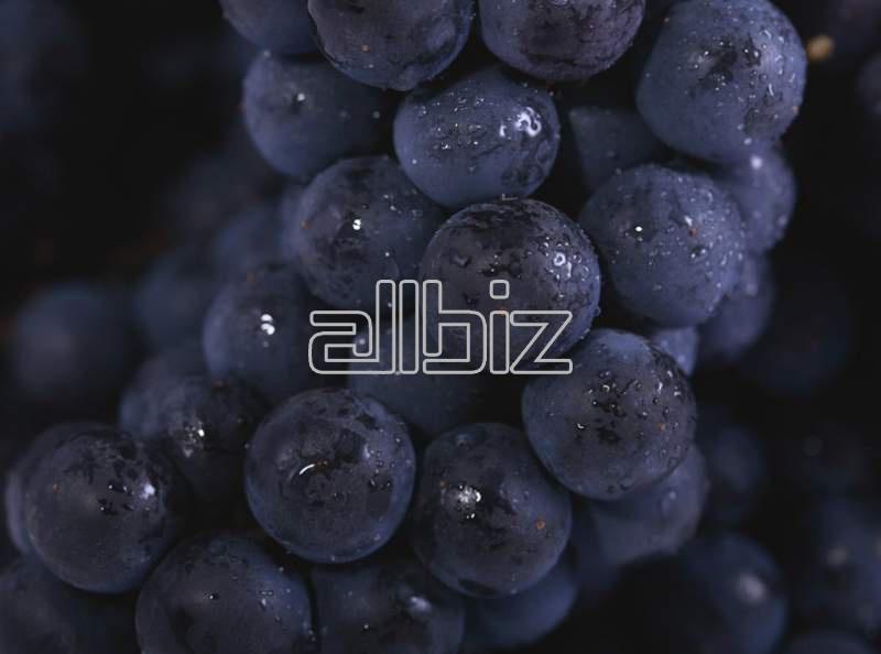 Купить Виноград консервированный