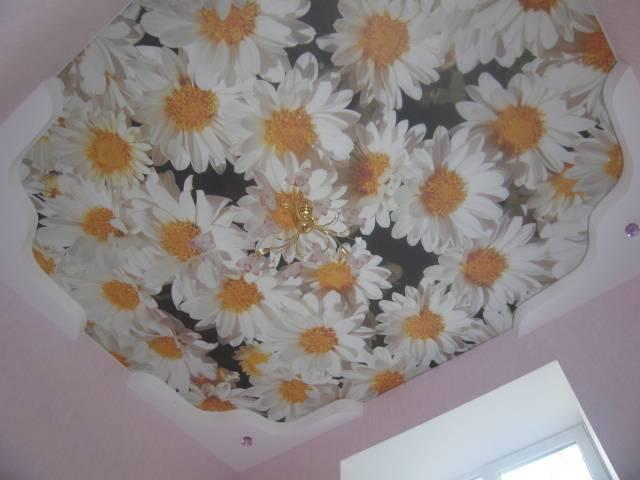 Купить Натяжные потолки с фотопечатью