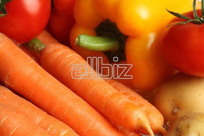 Купить Плодоовощная продукция