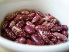 Фасоль - по строению створок бобов различают лущильные, полусахарные и сахарные сорта