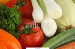 Экспертиза сельскохозяйственной продукции
