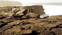 Инженерно-технические разработки в геологии, в горной добыче